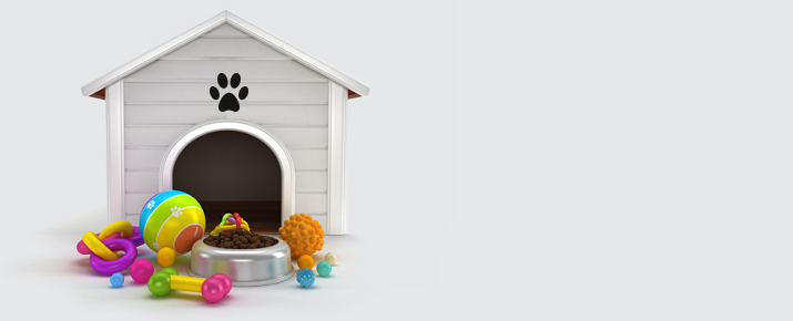 House, food and toys for the dog